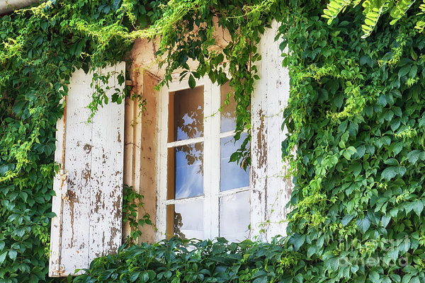 French window Provence