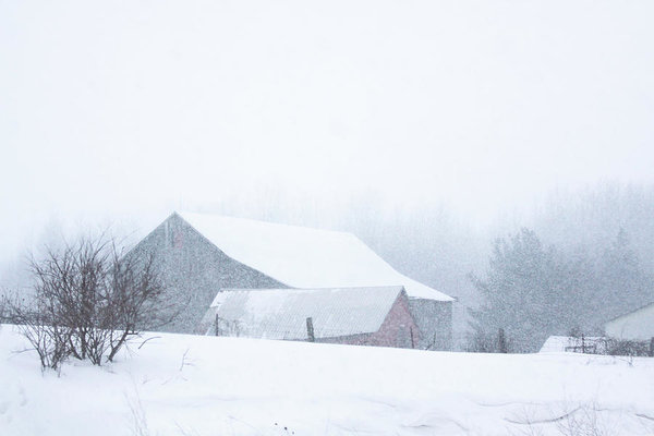 Barns in a snow blizzard in Ontario, Canada