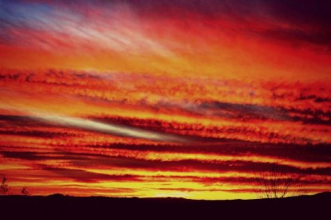 Sunset in Mohave Desert, Arizona