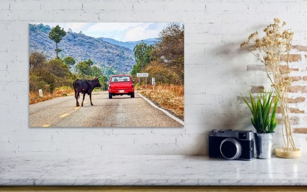 Don't Travel with a Red Car In Mexico Art Print by Tatiana Travelways