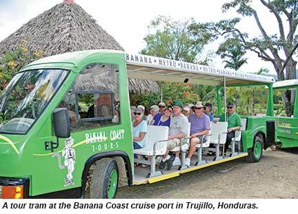 Banana Coast tram