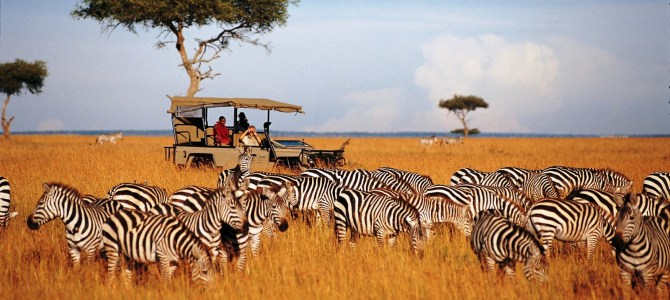 The Serengeti National Park