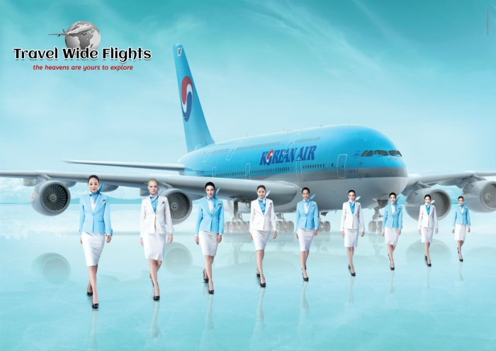 Korean Air Travel Wide Flights
