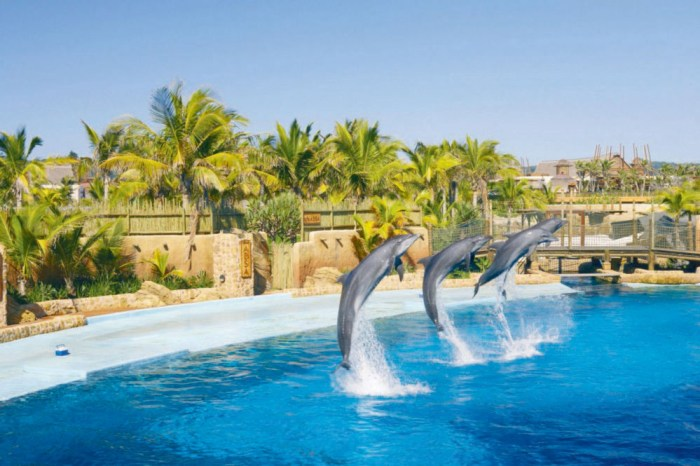 Shaka Marine World Durban, cheap flights to durban, durban tourism, things to do in durban, durban tourism, durban travel, durban blog,