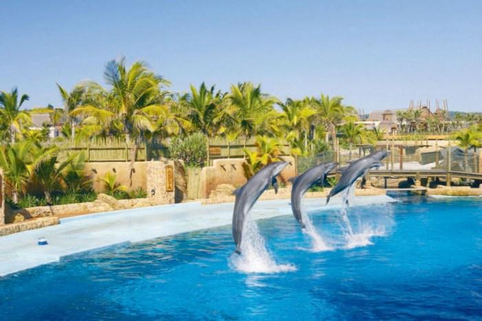 Shaka Marine World Durban, cheap flights to durban, durban tourism, things to do in durban, durban tourism, durban travel, durban blog,