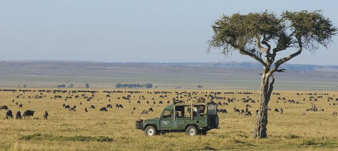 Africa's Best National Parks To Visit In Summer