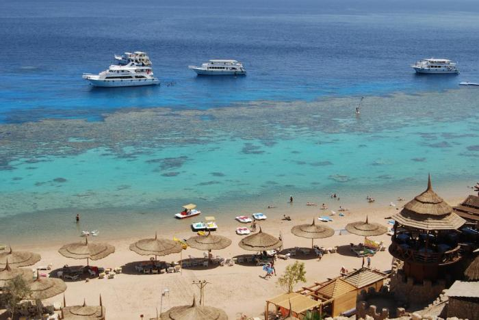Ras Um Sid Beach and Reef, Ras Um Sid Beach and Reef images, Ras Um Sid Beach and Reef resorts, Ras Um Sid Beach Resorts, Naama Bay, Naama Bay Beach, Naama Bay Beach resorts, Naama Bay Beach Hotels, cheap flights to Sharm el sheikh egypt, direct flights to Sharm el sheikh egypt, last minute flights to Sharm el sheikh egypt, cheap travel, flights to Sharm el sheikh egypt, direct flights, Sharm el sheikh egypt, things to do in Sharm el sheikh egypt, things to do in Sharm el sheikh egypt, Sharm el sheikh egypt tours, Sharm el sheikh egypt flight deals, islands in Sharm el sheikh egypt, last minute flights to Sharm el sheikh egypt, Sharm el sheikh egypt travel guide, things to do in Sharm el sheikh egypt, Sharm el sheikh egypt tour, Sharm el sheikh egypt hd images, Sharm el sheikh egypt tourism, direct flights to Sharm el sheikh egypt , Sharm el sheikh egypt islands, Sharm el sheikh egypt beach travel guide, Sharm el sheikh egypt, Cheap Flights to Sharm el sheikh egypt, direct flights to Sharm el sheikh egypt, last minute flights to Sharm el sheikh egypt, Sharm el sheikh egypt tourism, Sharm el sheikh egypt travel guide, must visit places in Sharm el sheikh egypt, Sharm el sheikh egypt travel guide,