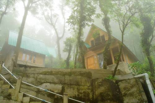 Pinewood Log Huts​ Kurseong