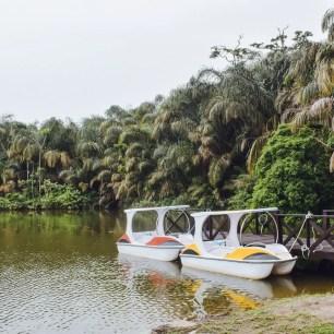 paddle boats Lakowe