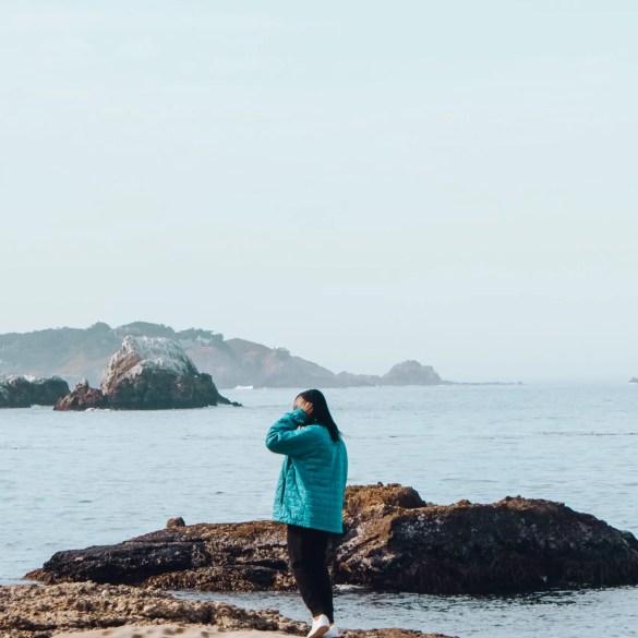 Point Lobos State Natural California