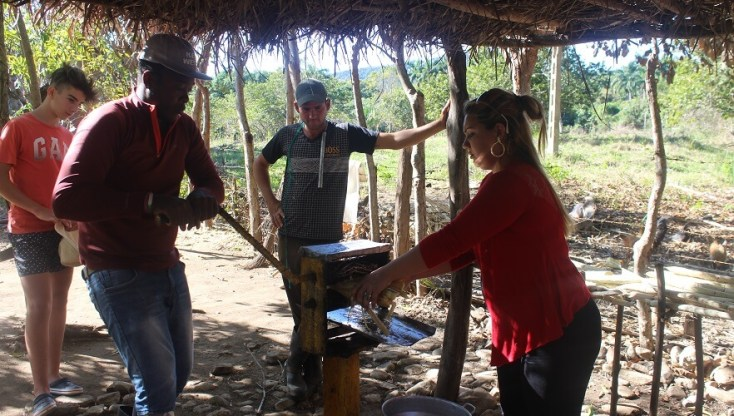 Making juice from sugarcane, Cuba