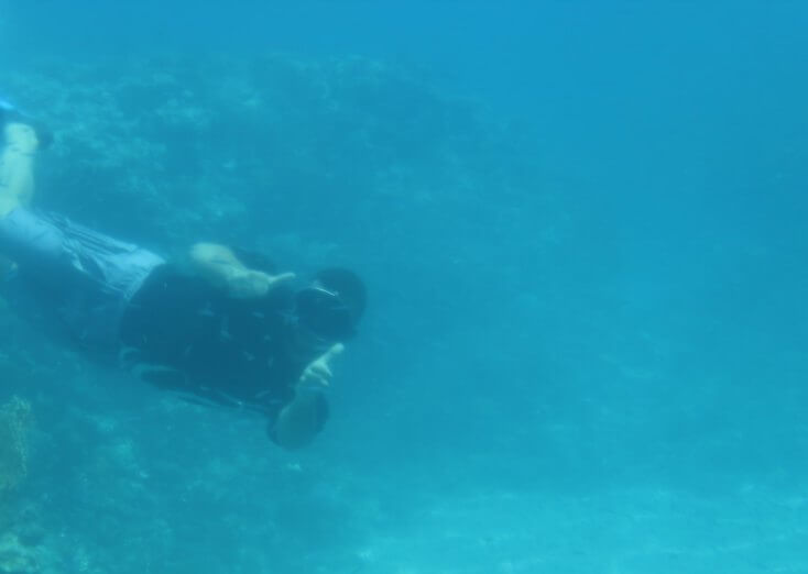 Human fish in the Red Sea, Aqaba