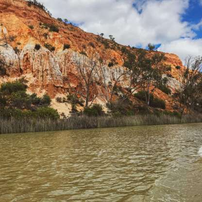 Mighty Murray River scenery