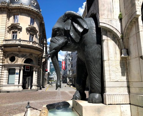 elefante di Chambery