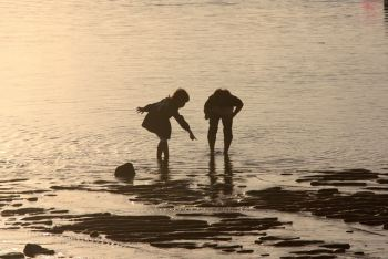 Children's Evening Delight at Iho Tewoo Beach in Jeju Island