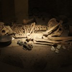 This person was probably a human sacrifice by the position in which its body was found.