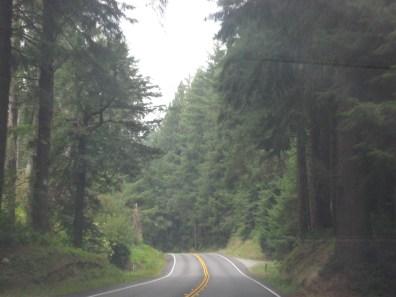 Along Pacific Coast Highway 1