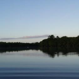 Sunrise in the cenote.