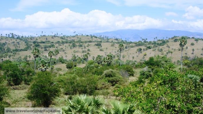 Rinca - Indonesia Itinerary