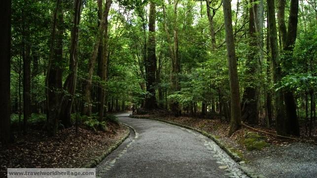 Road Amaterasu Shrine
