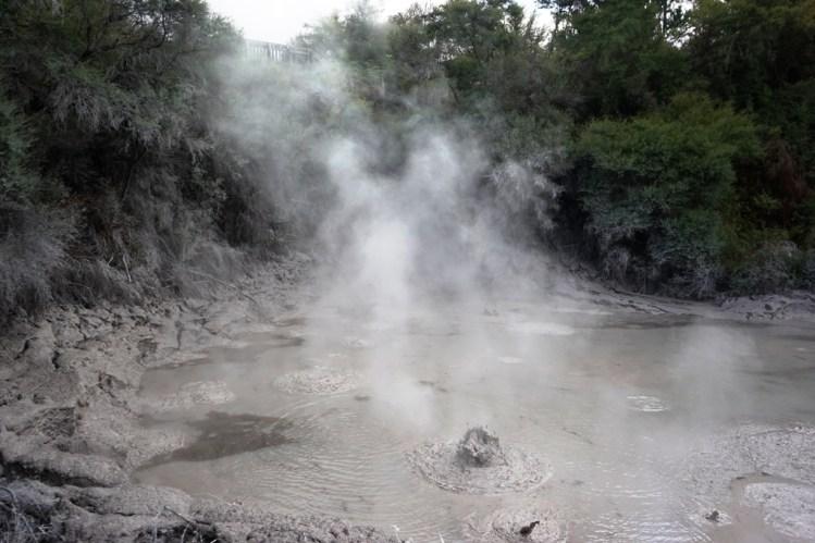 Rotorua Mud Flats