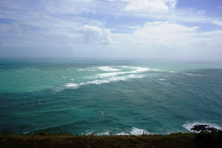 Where the Pacific Ocean meets the Tasman Sea, you can actually see the seas clash. I'm going to miss this natural beauty.