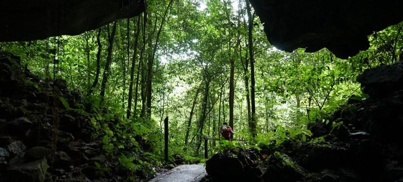 Gunung Mulu National Park – Evaluation