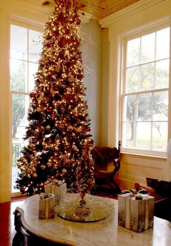 Christmas tree in Loyd Hall Plantation house