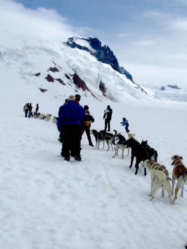 Mushers and mixed-breed huskies