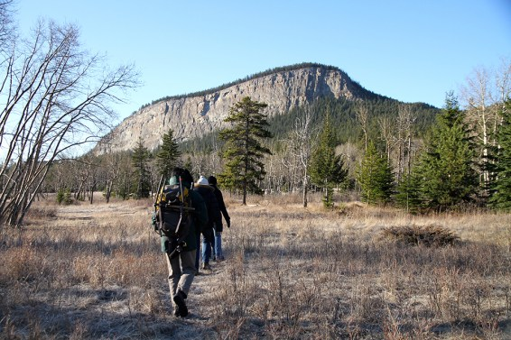 Guided hikes along Jasper's Pallisades. Photo Credit: Jenn Smith Nelson