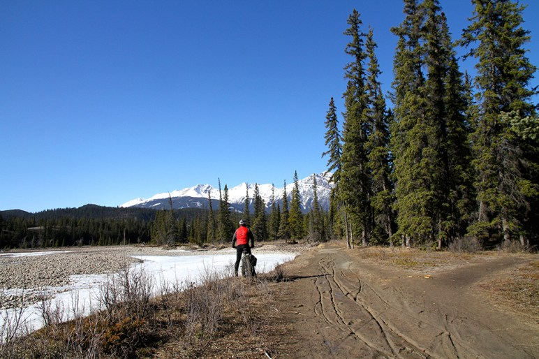 Fat biking in Jasper National Park. Photo Credit: Jenn Smith Nelson