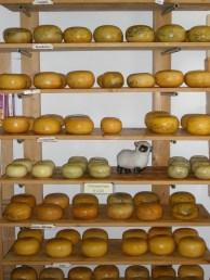 Cheese reigns supreme. Photo Credit: Deborah Stone