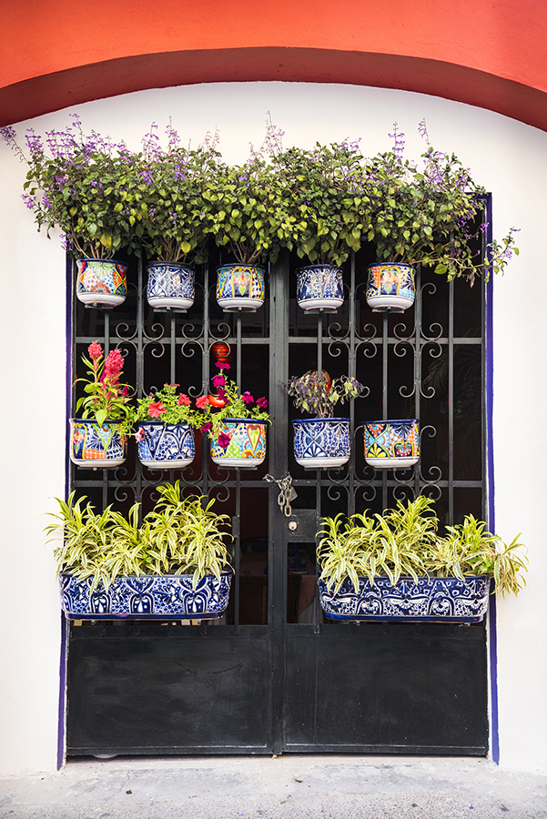 Plants in ceramic pottery planters in a window in old town PV