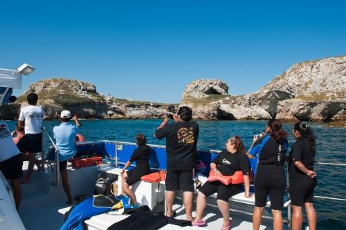 Snorkeling at the Isla Marietas National Park (Parque Nacional Isla Marietas) a UNESCO Biosphere Reserve, Puerto Vallarta, Mexico.
