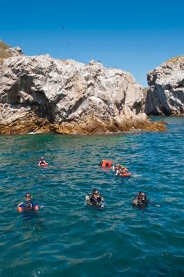 Snorkeling near rocks at Isla Marietas National Park (Parque Nacional Isla Marietas) a UNESCO Biosphere Reserve, Puerto Vallarta, Mexico.