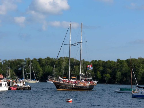 Baddeck Amoeba schooner