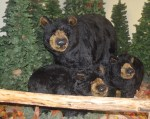 Faux Black Bears at Cherohala Center