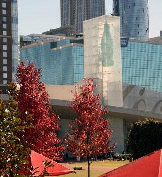 Downtown Atlanta Tour by Kathleen Walls