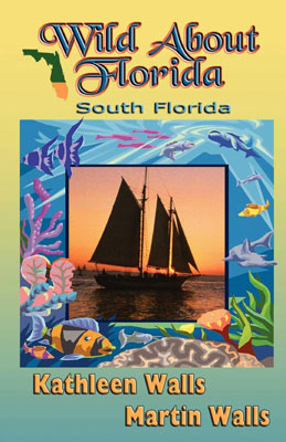 Wild About Florida - South Florida by Kathleen Walls
