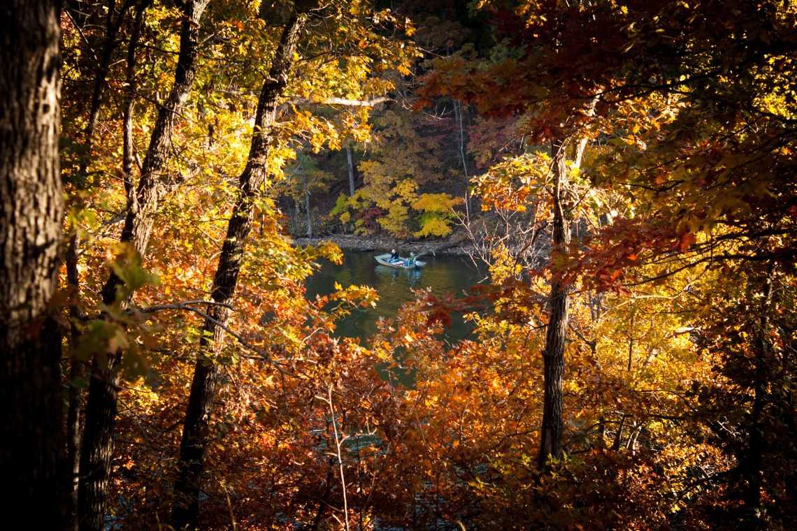 Fall Color in the Midwest: The Big Reveal