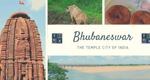 Bhubaneswar: The Temple City of India