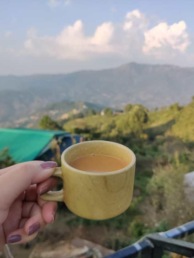 Tea in Nainital