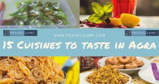 Cuisines to taste in Agra