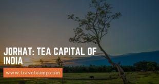 Jorhat: Tea Capital of India