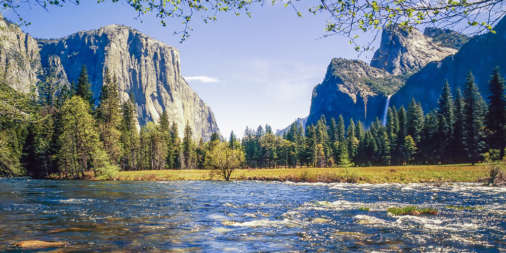 Image result for yosemite park