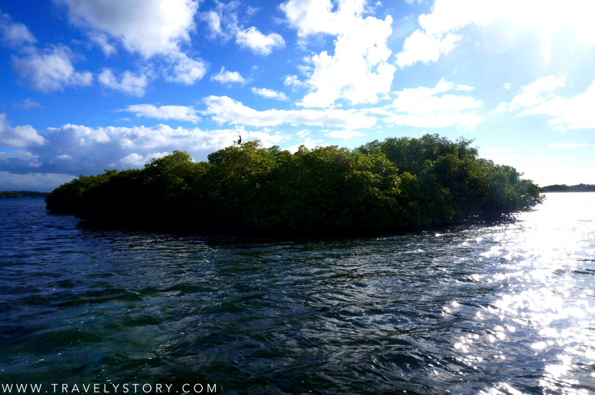 travely-story-incontournables-guadeloupe-13