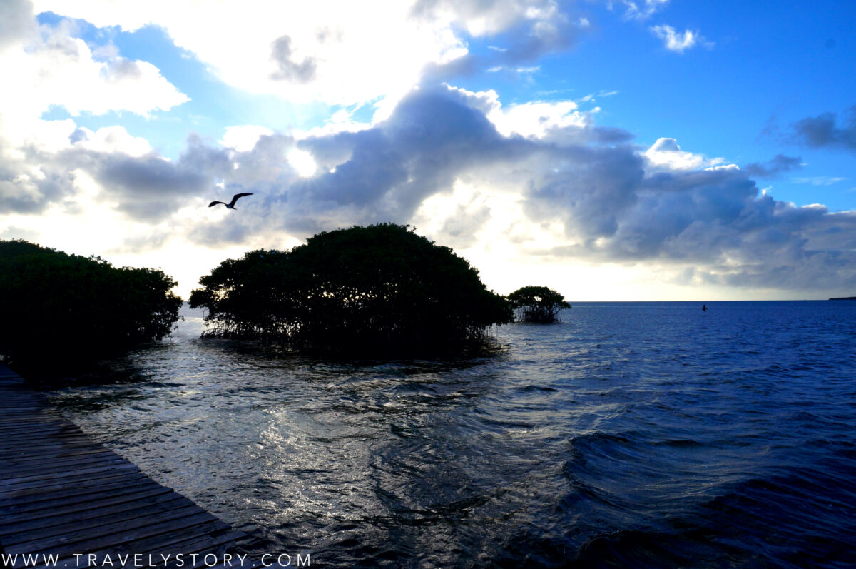 travely-story-incontournables-guadeloupe-22