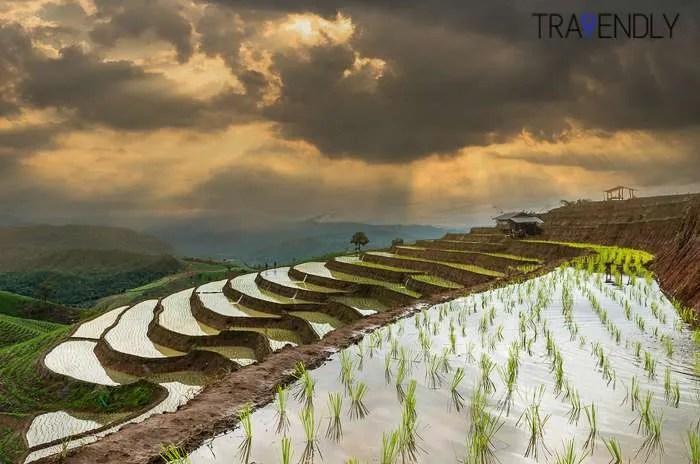 Chiang Mai Thailand rice field storm sky