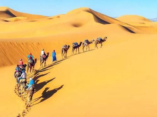 Camel caravan Sahara Desert Morocco