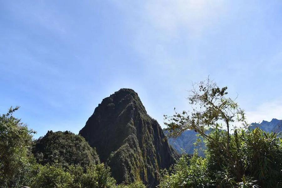 Mountain peak and vegetation